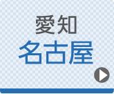 名古屋ひざ関節症クリニック公式ホームページへ